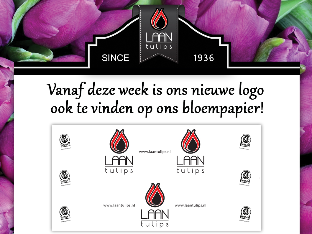 New wrapping paper Laan Tulips bloempapier